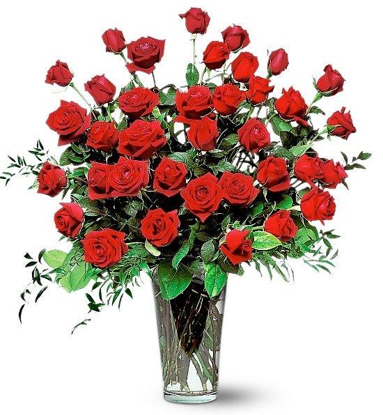 Three Dozen Red Rose Bouquet