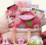 The Best Big Wishes Baby Girls Pink Gift Basket
