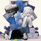 Welcome Baby Boys Gift Basket