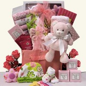 Welcome Baby Girls Gift Basket