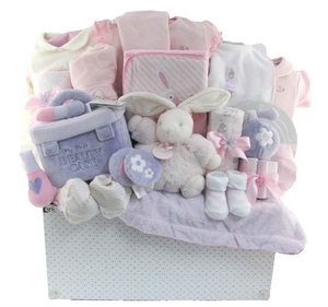 Baby Girls Gift Baskets Canada